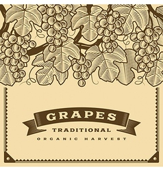 Retro grapes harvest card brown vector image