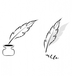 feathers design vector image vector image