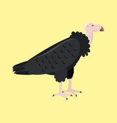 andean condor animal largest flying bird in vector image