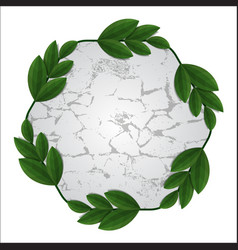 stone with leaves frame vector image