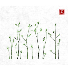 tree branches with fresh green leaves on rice vector image