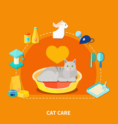 pet care concept vector image vector image