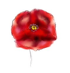 Digital Watercolor Poppy2 vector image