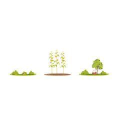 Farmland plants semi flat rgb color set vector