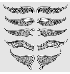 Heraldic bird angel wings set vector image
