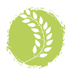 Leafs plant wreath icon vector