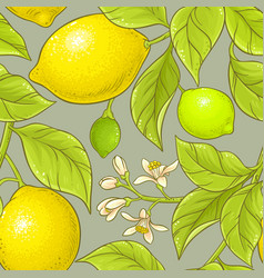 Lemon pattern vector