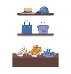 summer mode shelves poster vector image