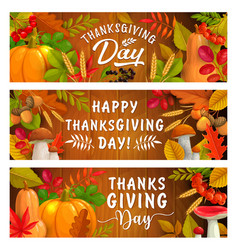 thanksgiving day autumn harvest holiday banners vector image