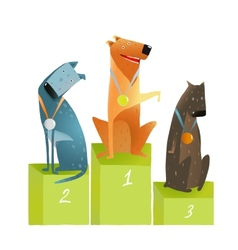 Three Winners Dogs Sitting on Podium with Medals vector image
