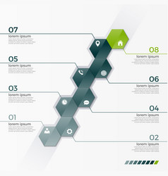 infographic template with 8 hexagons vector image vector image