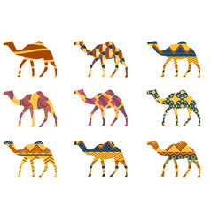 Camel with a pattern set vector