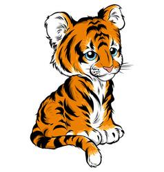 Cute baby tiger lies vector