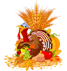 cute turkey with cornucopia vector image