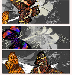 floral cards set with butterflies vector image