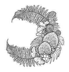 Graphic prehistoric plants vector