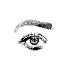 hand drawn women fashion eye make up vector image