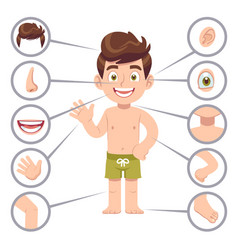 Kid body parts human child boy with eye nose and vector