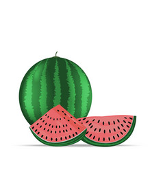 logo for whole ripe red fruit vector image
