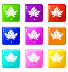 maple leaf icons 9 set vector image