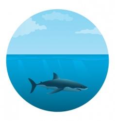 Shark in sea vector