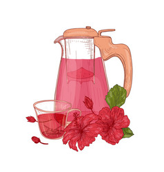 composition with hibiscus tea in glass jug cup vector image