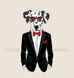 Hand drawn of dalmatian dog dressed up in tuxedo vector