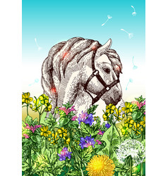 Horse with flowers vector