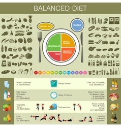 Healthy eating infographic vector image