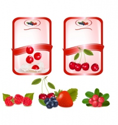 two labels with cherries vector image