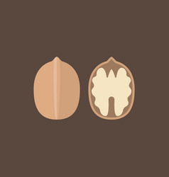 walnut icons set vector image vector image