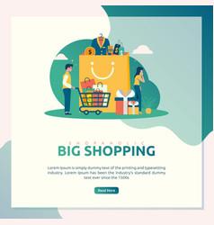 big shopping sale vector image