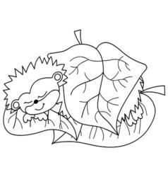 Black And White Cartoon Hedgehog vector