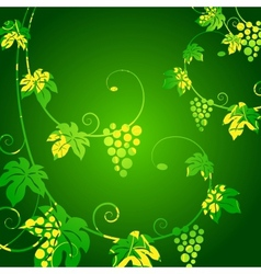 Grape vines green background vector