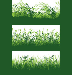 green grass meadow border wallpaper vector image