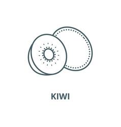kiwi line icon linear concept outline vector image