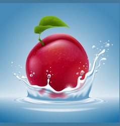plum fruit in water splash vector image