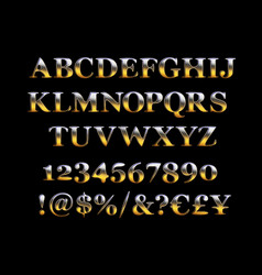 premium quality gold font vector image