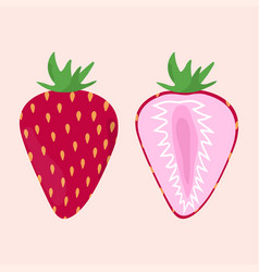 Strawberry on the pink background vector