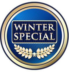 winter special icon vector image