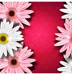 Romantic background with gerberas vector image vector image