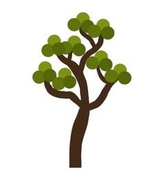 Tree with leaves ecology theme design vector image