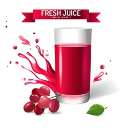 Fresh juice background vector image vector image