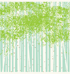 birch grove background against blue sky vector image