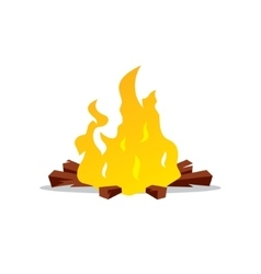 Bonfire Cartoon vector image