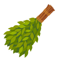 Broom from birch twigs branches for russian steam vector