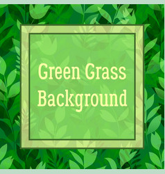 Green flowers and grass vector