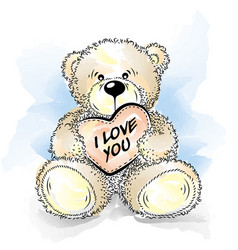 drawing teddy bear with heart vector image