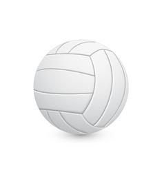 voleyball ball vector image