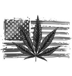 Design an isolated usa flag with a hemp leaf vector